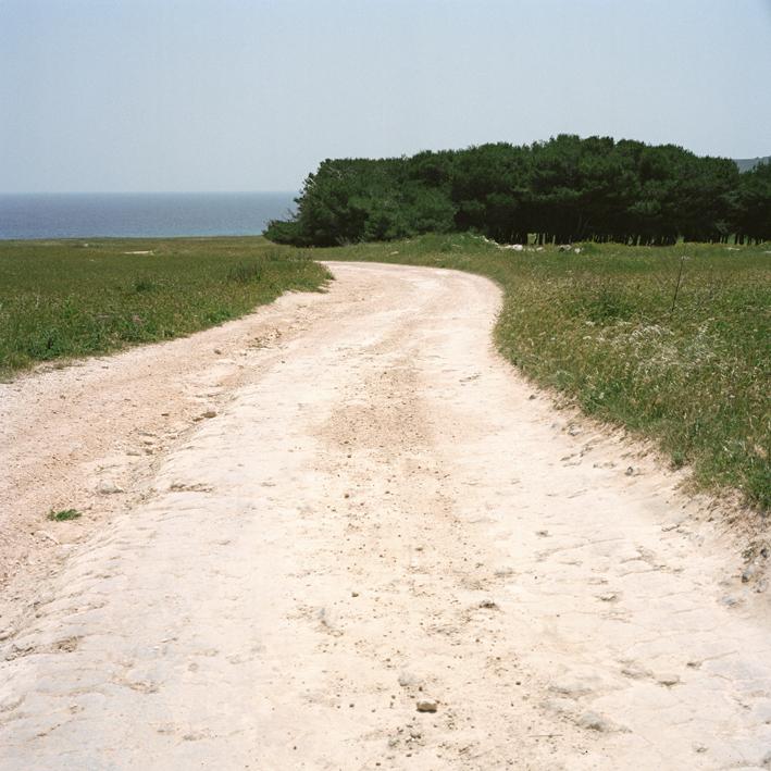 Road to Otanto #2, Salento, Apulia