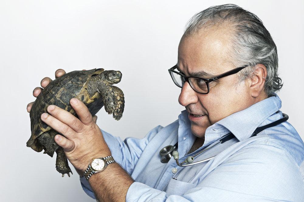 Fabio Borganti, veterinary  with Gigia, land turtle