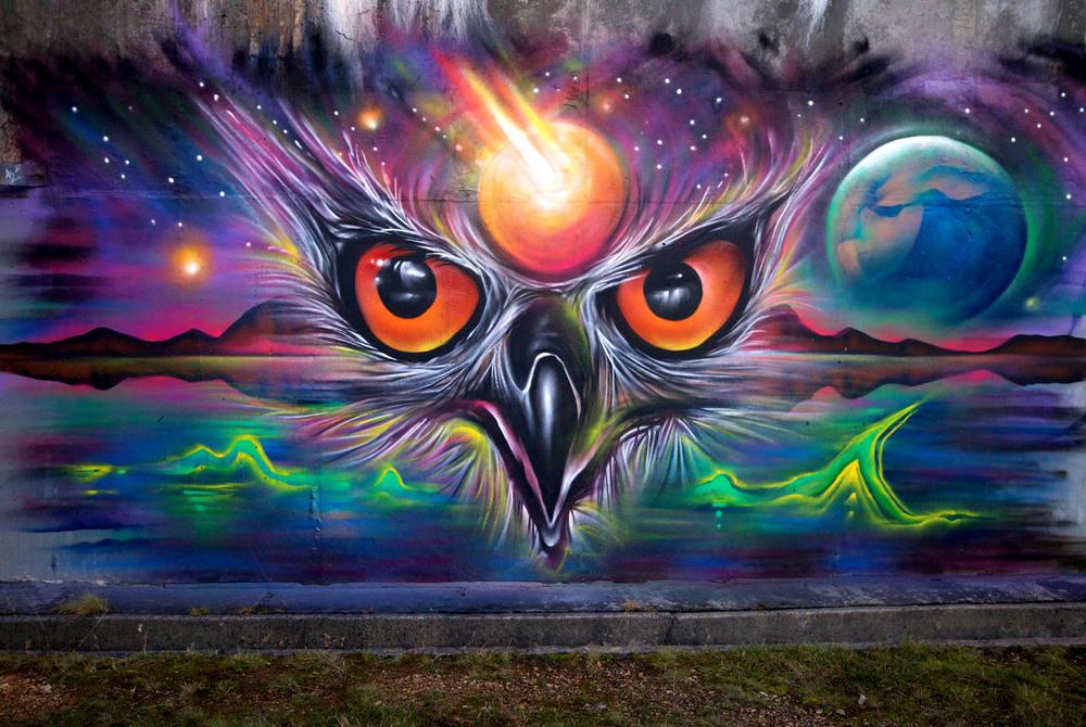 owl head.jpg