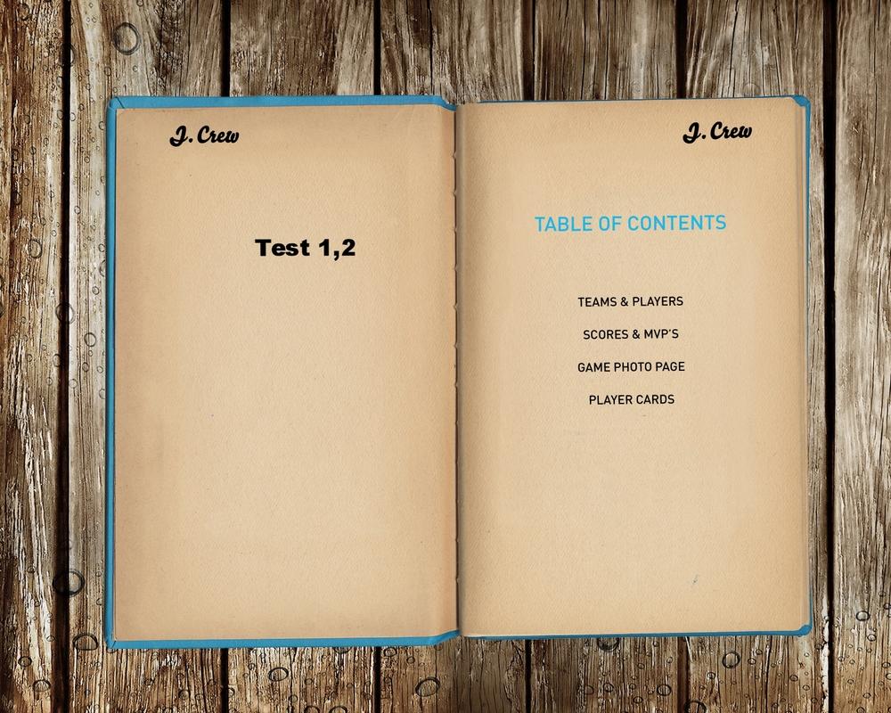 JCREWKayabiLogbook_P1-2.jpg