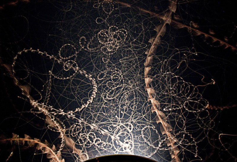 Moth trails at night.  Photo by Steve Irvine