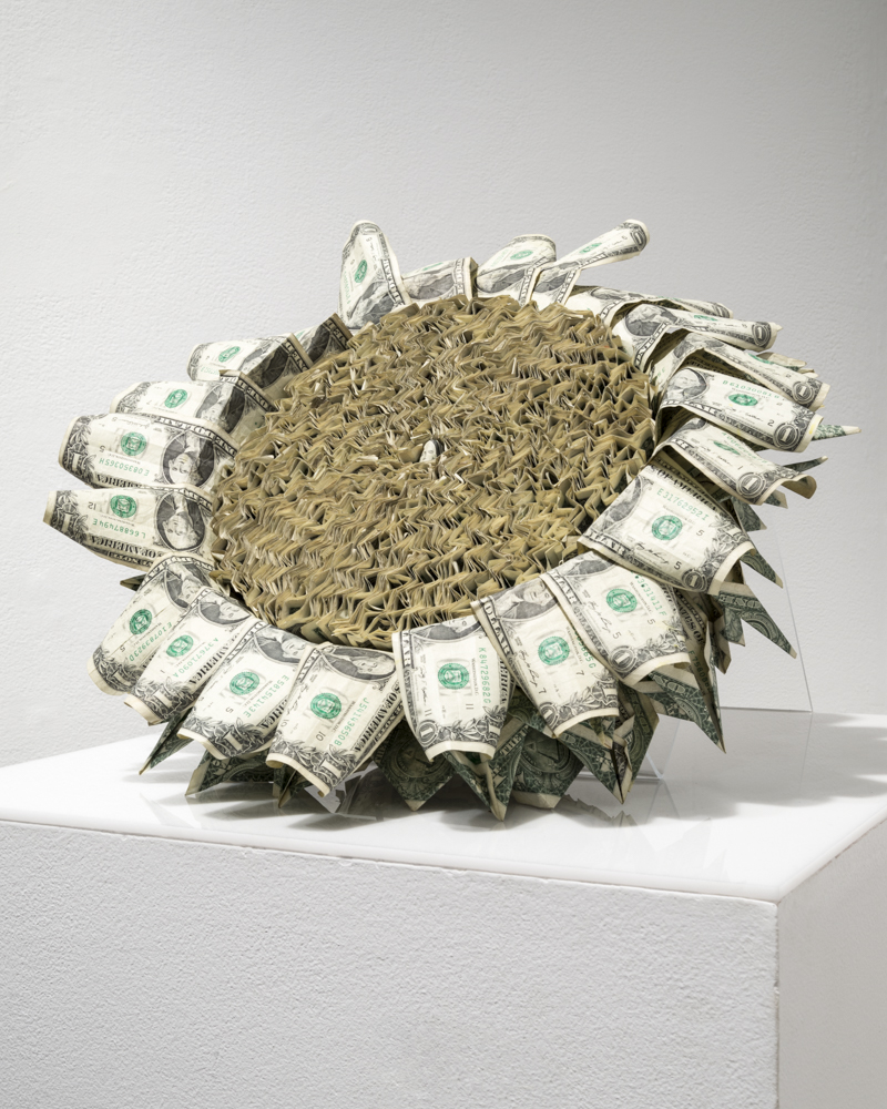 Spent Flower    (2015)  USA $1 bills, rope, acrylic stand