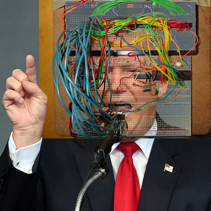 Donald Trump (the big hack), 2017. Digital image for print (edition to be determined)