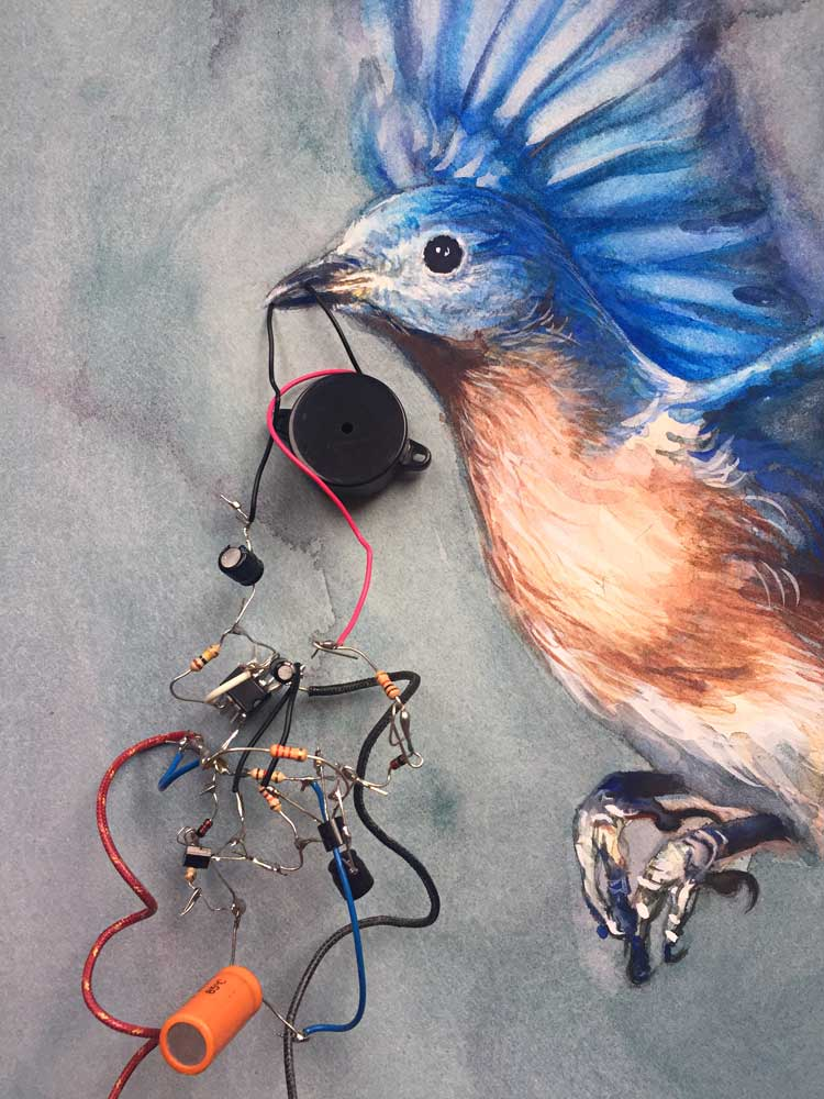 bluebird_detail.jpg