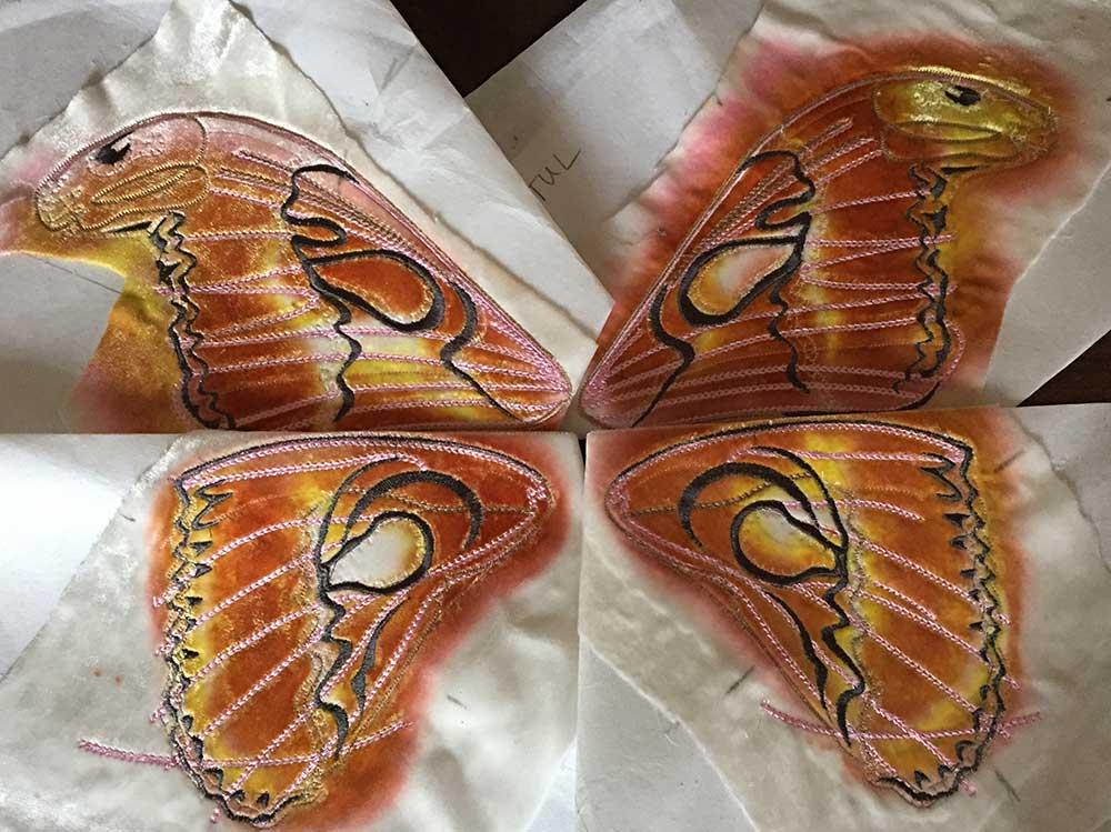 Atlas-Moth_underside.jpg
