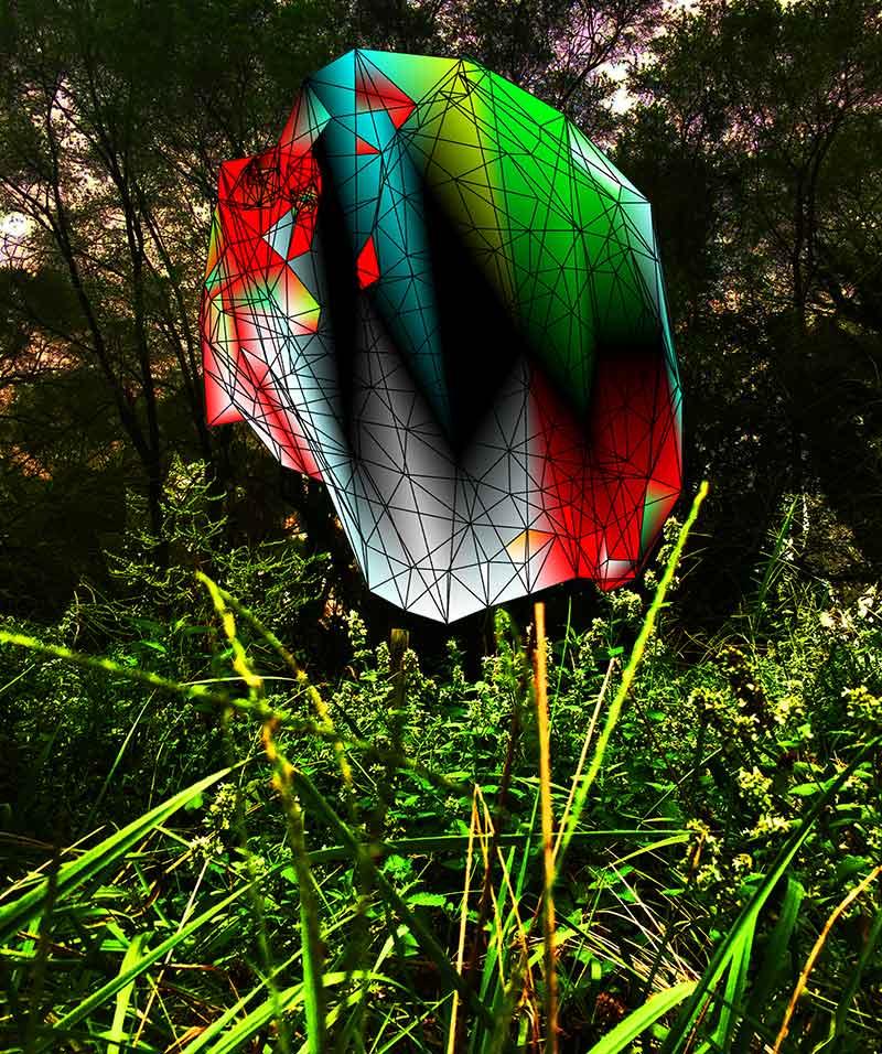 Kelly Heaton electronic art nature
