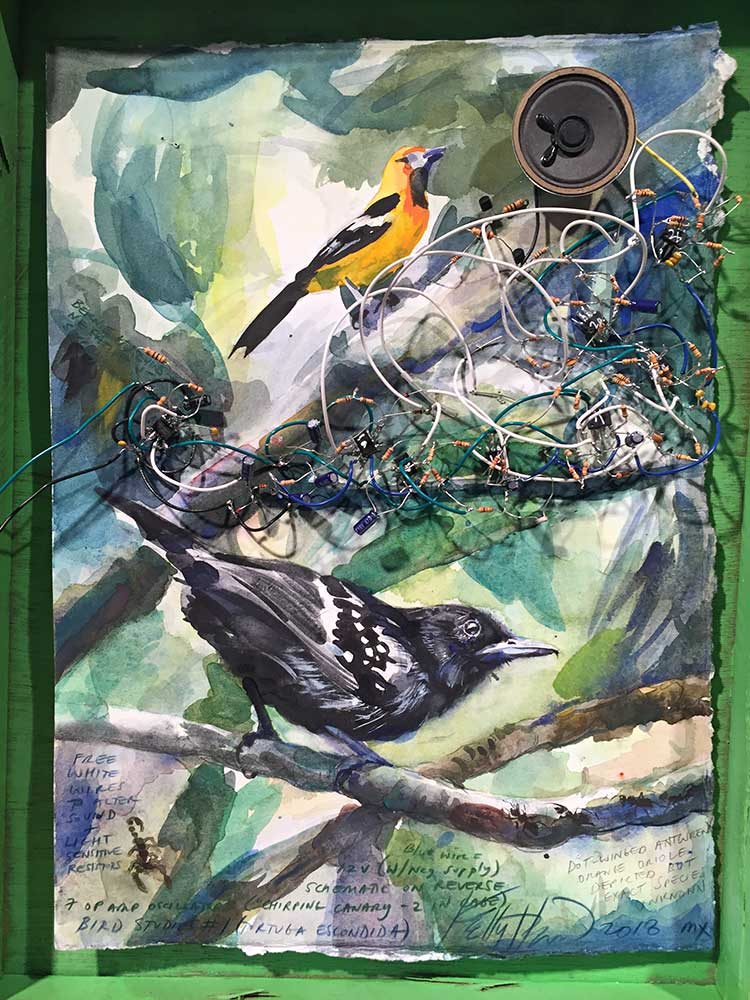 Bird Study #1 (Tortuga Escondida), 2018.  Analog electronics and watercolor on paper with custom wood frame