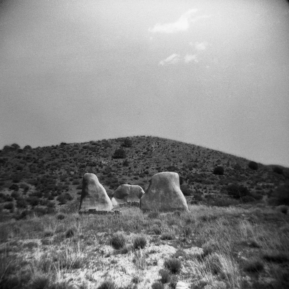 Steele-Arizona-Holga-11.jpg