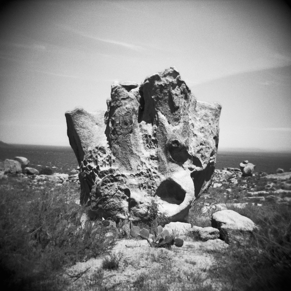 Steele-Arizona-Holga-18.jpg