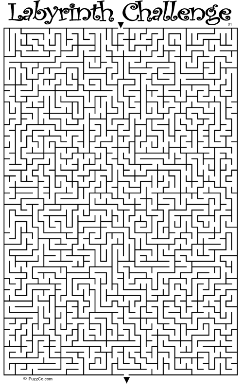 Labyrinth Challenge
