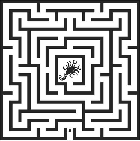 5_Scorpion-Maze.png
