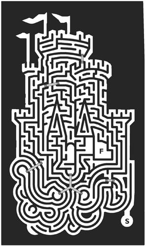 41_Castle-Maze.png