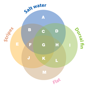 Games puzzles knight features content worth sharing venn diagram ccuart Choice Image