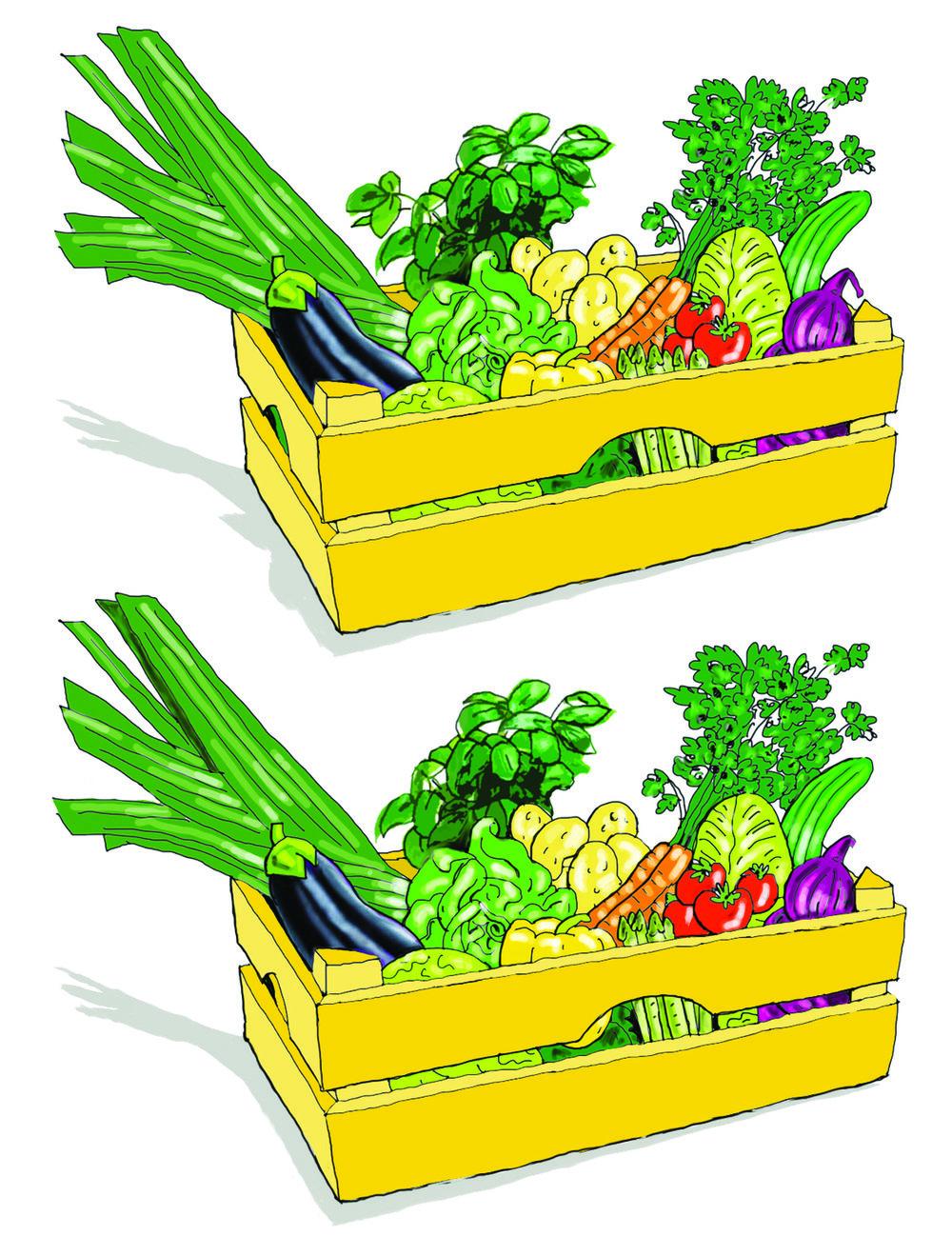 36_10 Verschillen - kist met groente.jpg