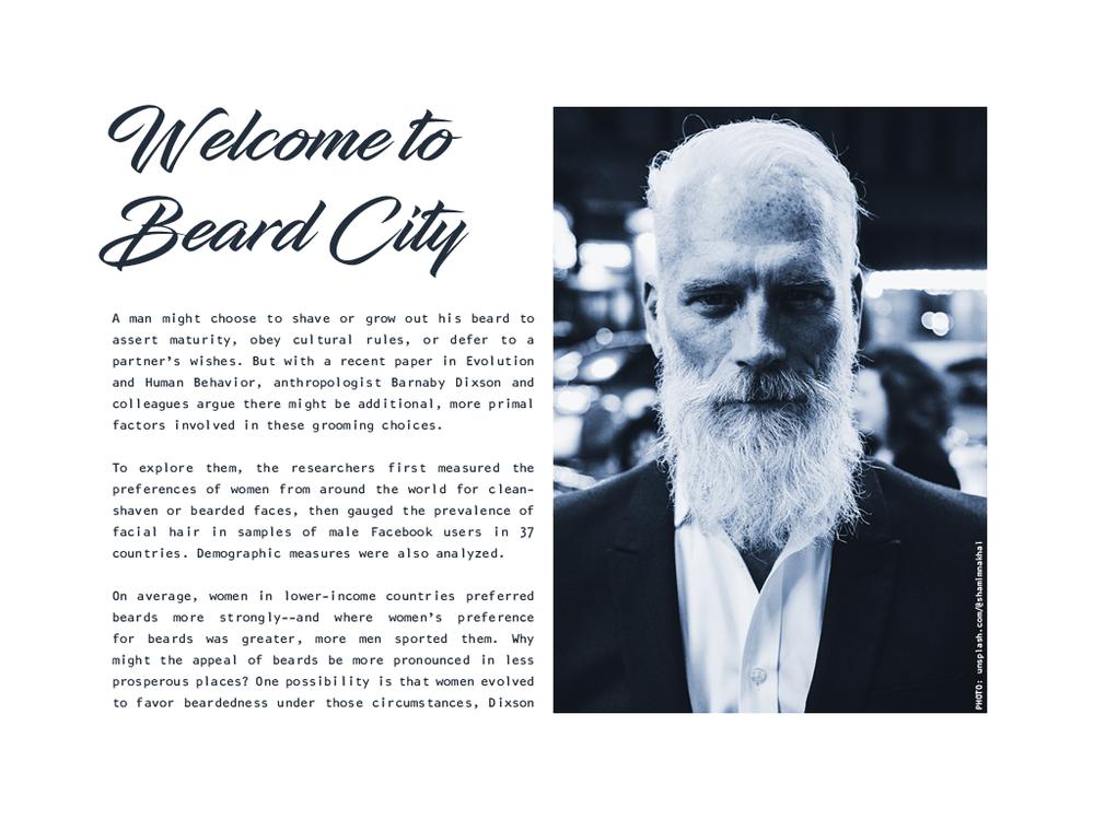 Beard City.png