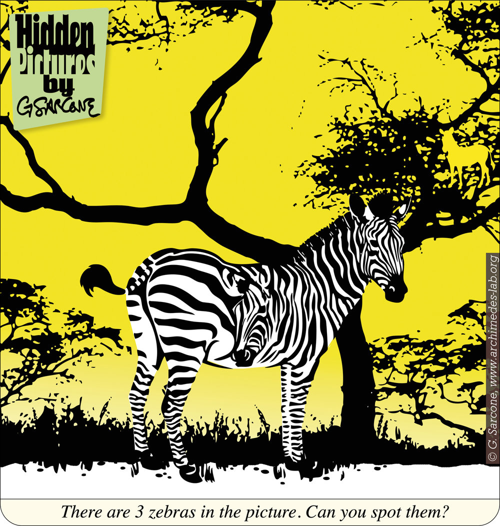 HP6-Zebras.jpg