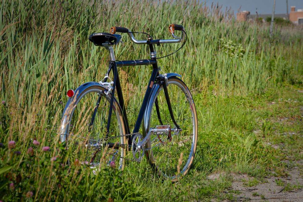 porter bike-5.jpg