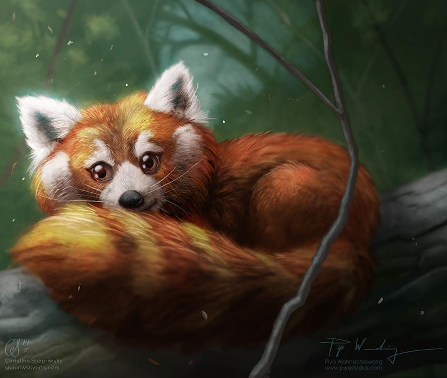 Christina's Red Panda