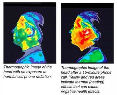 Thermal Heating of Head post Cell Phone use.jpg