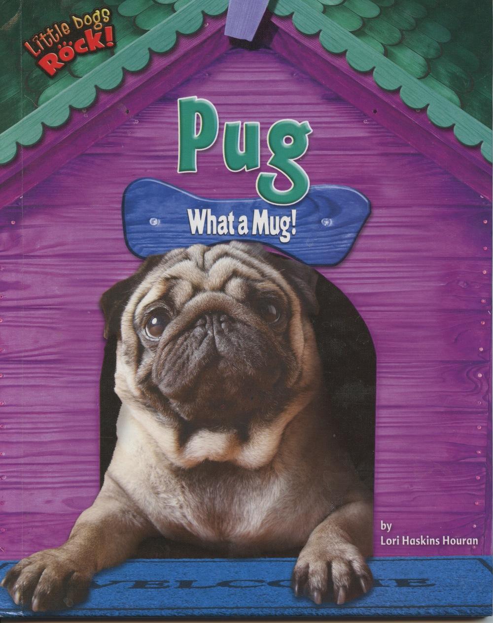 Pug cover.jpeg