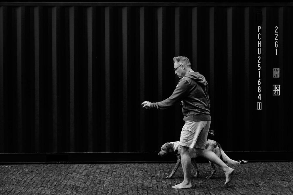 Rene van Rijswijk  Urban fauna #1