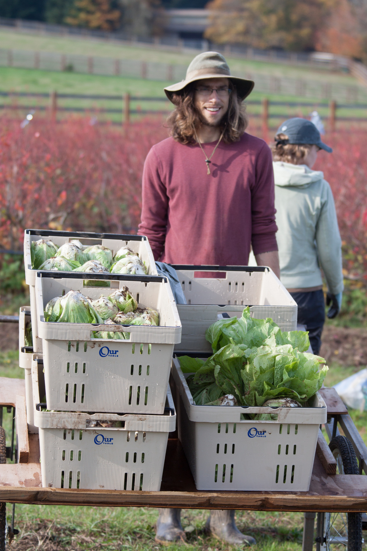 Our Table Harvest Photo.jpg