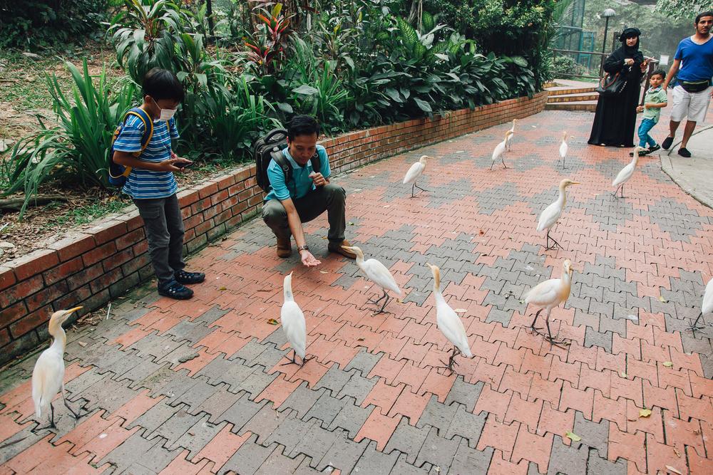 MALAYSIA083.jpg