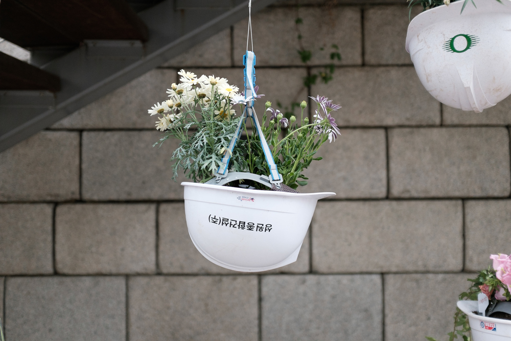 KOREA_029.jpg