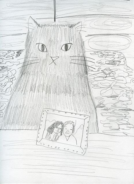 baobao staring cat