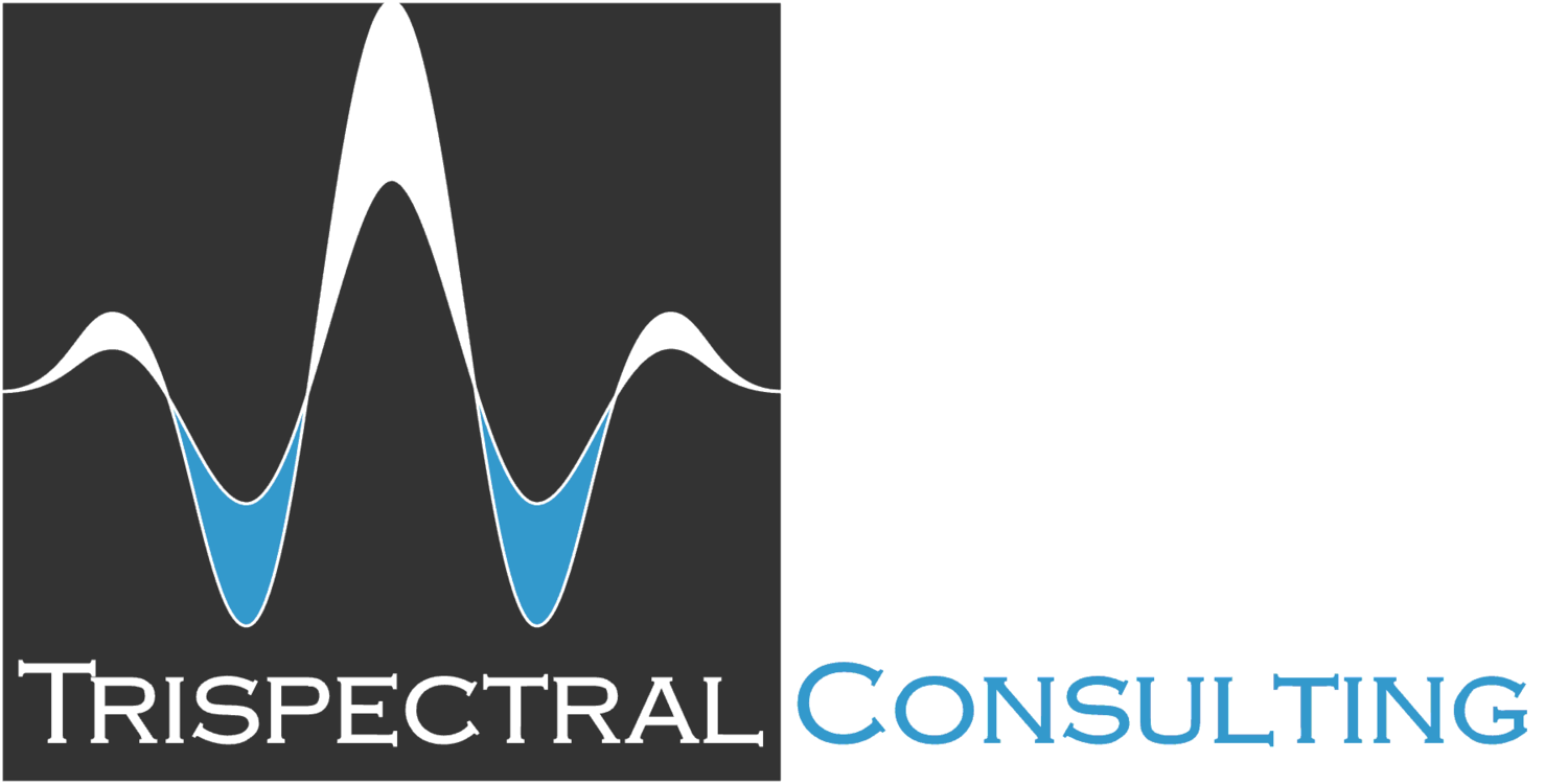 Structural Dynamics Consultants