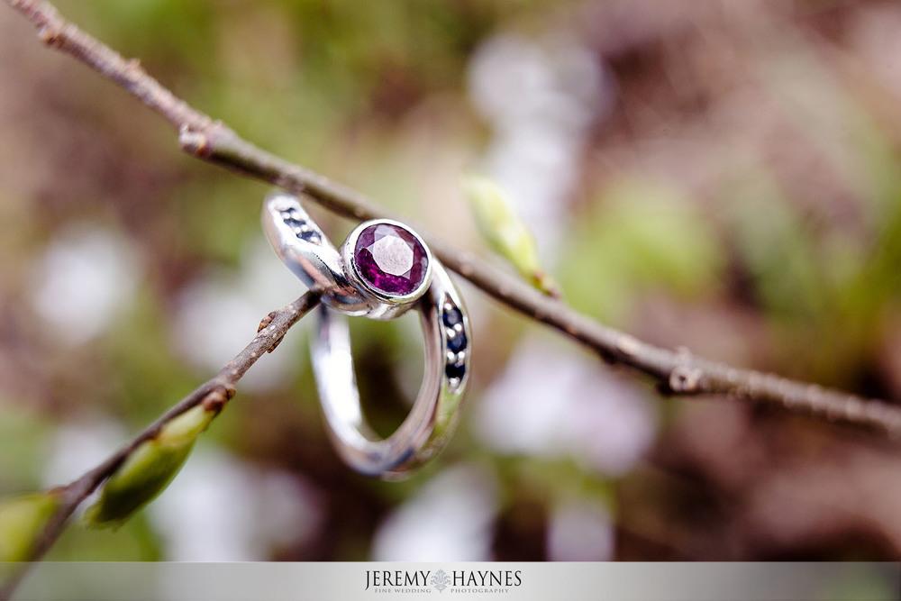 beautiful-engagement-rings-in-trees.jpg