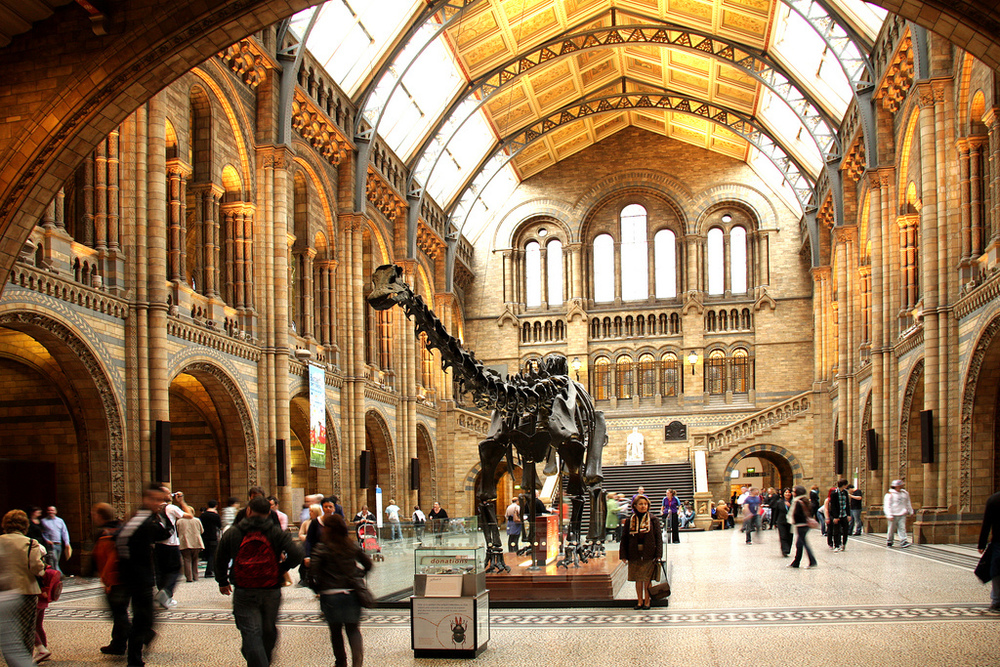 @Natural History Museum