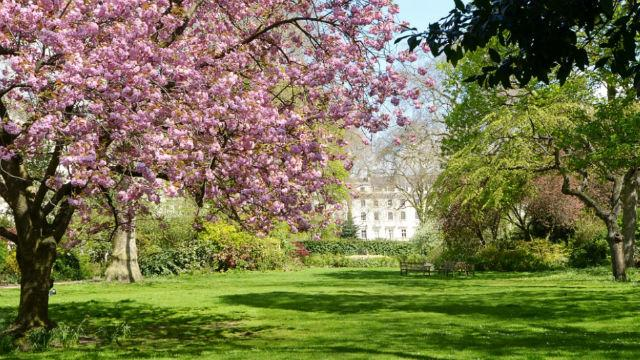 Open Garden Squares Weekend: Warwick Square