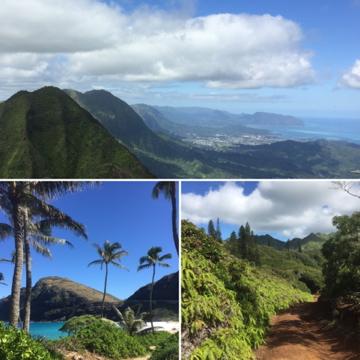 One of many beautiful hikes: Wiliwilinui trail, Oahu.
