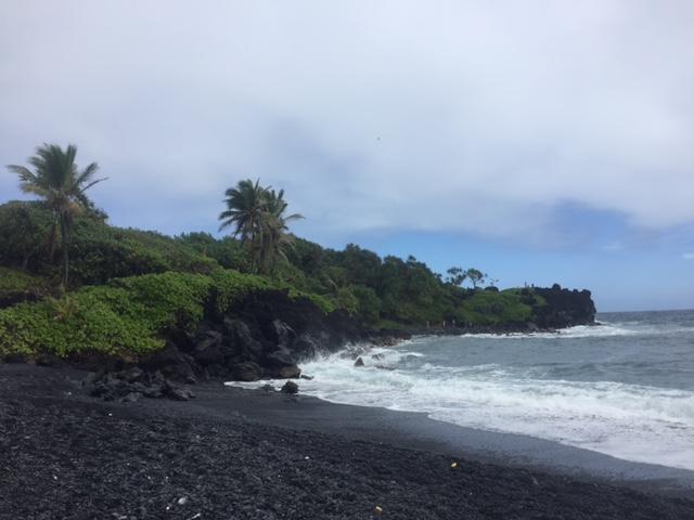 Black-sand beach.