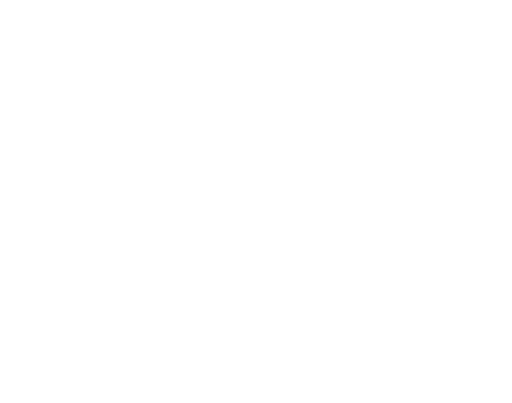 Stephanie Falcone