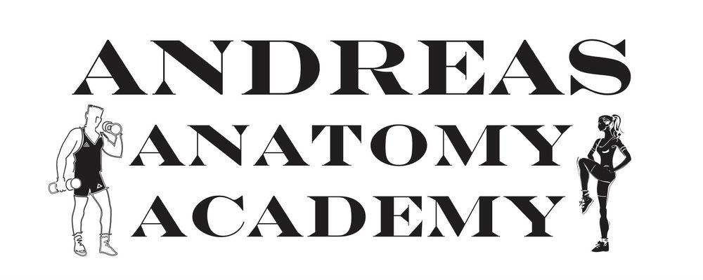 Andreas Anatomy Logo.jpg