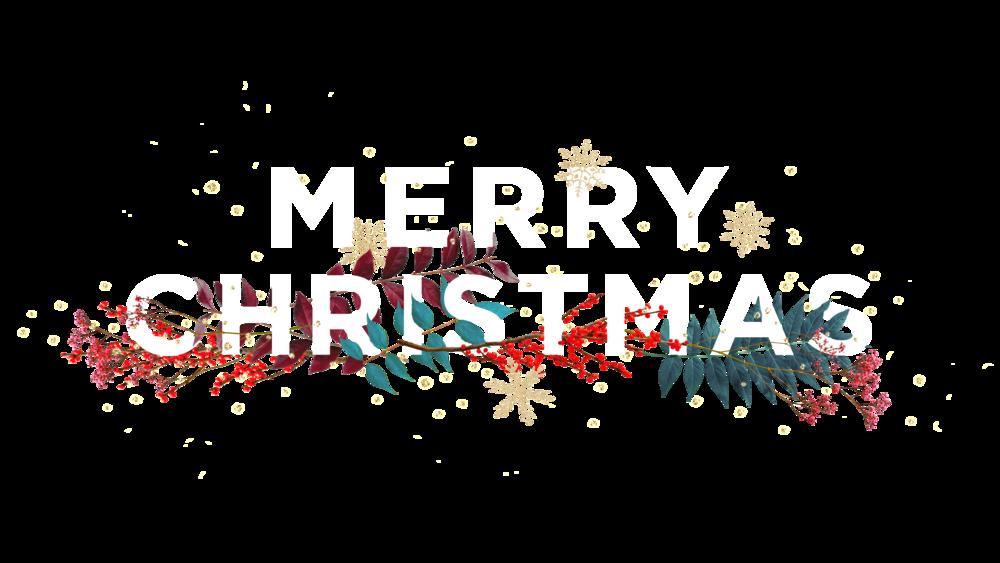 MerryChristmas_ALT.png