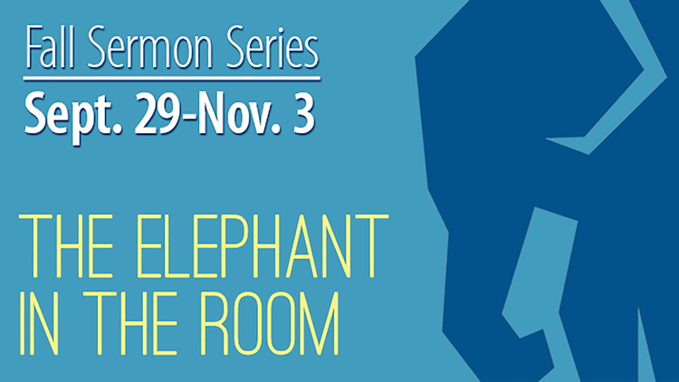 Copy of The Elephant in the Room