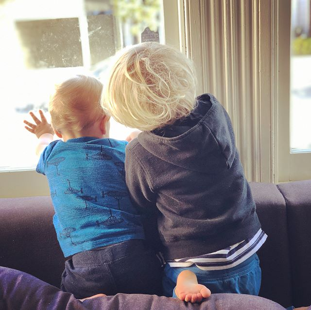 Waving daddy off to work this morning 👋🏻 These two melt me 💙💙 Felix is also home sick ... yes, again 😢 Please tell me it's just the first year of pre-school and that second babies have a better immune system from being exposed to their older sibling 🙏🏻 Send us some healthy energy please 🌻 we need it. #felixgustavmarlow #hendrixrasmusjohan #brothers #bigbrother #littlebrother • • • • • #wellmama #mom #mama #healthymom #momlife #motherhood #dailymotherhood #motherhoodunplugged #motherhoodinspired #bringingbackthevillage #healthcoach #lifecoach #healthyfamily #holisticmom #motherhoodrising #kids #babies #kidshealth #magicofchildhood #letthembelittle #bestofmom #raisinghumans #livethelittlethings #instakids #workathomemom