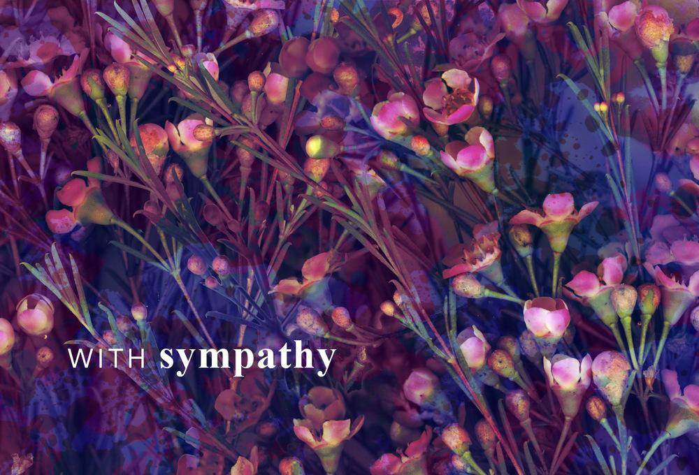 -04-4x6-sympathy2.jpg