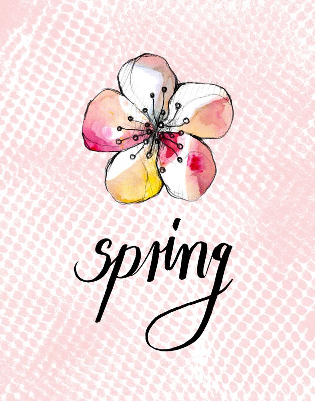 30-spring-01.jpg