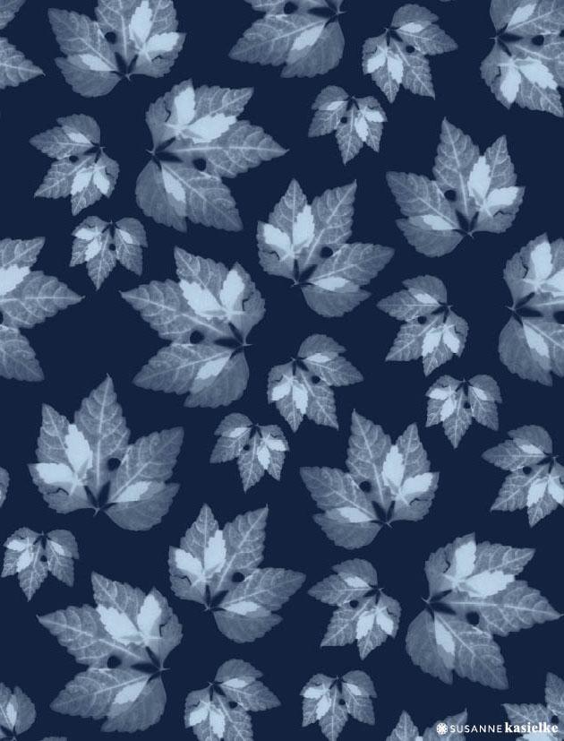 portfolio-ipad-21x16cm-01-floral0317.jpg