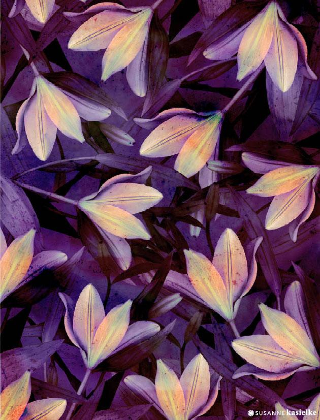 portfolio-ipad-21x16cm-01-floral0329.jpg