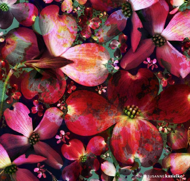 portfolio-ipad-21x16cm-01-floral0331.jpg