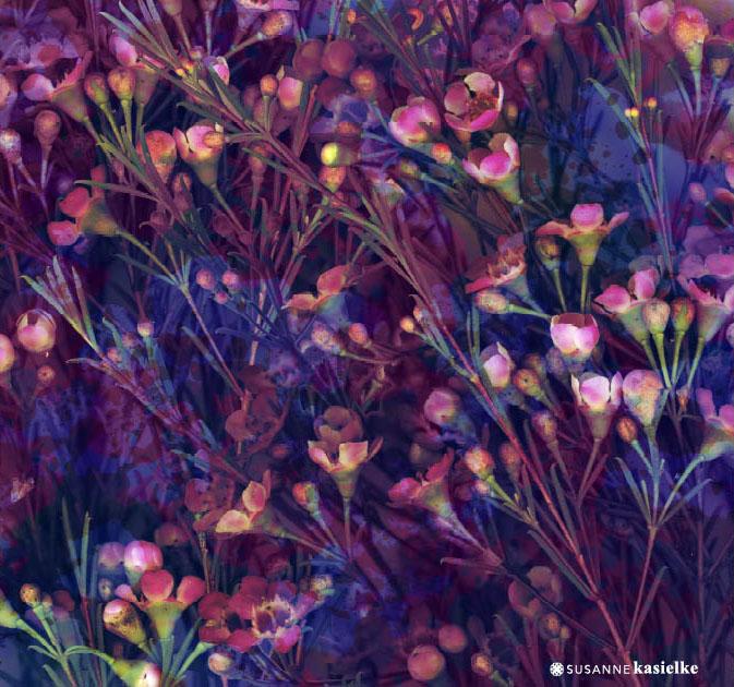 portfolio-ipad-21x16cm-01-floral0332.jpg
