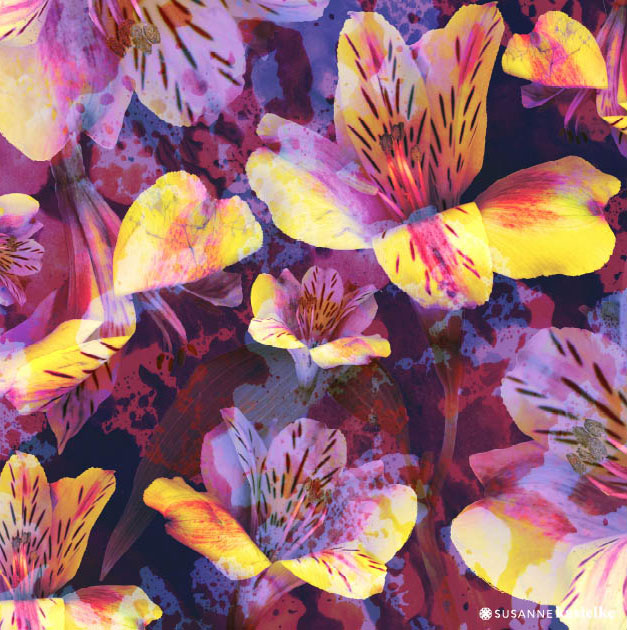 portfolio-ipad-21x16cm-01-floral0333.jpg