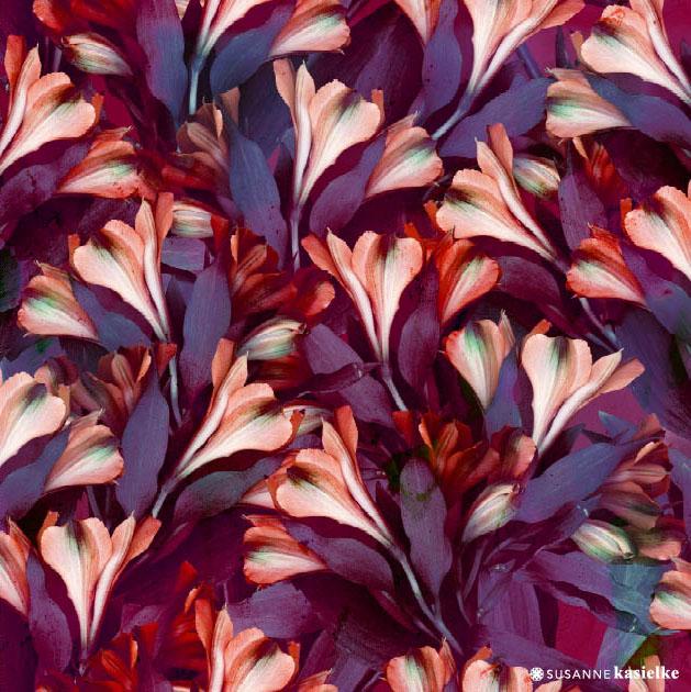 portfolio-ipad-21x16cm-01-floral0337.jpg