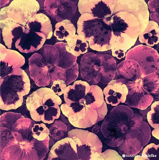 portfolio-ipad-21x16cm-01-floral0338.jpg