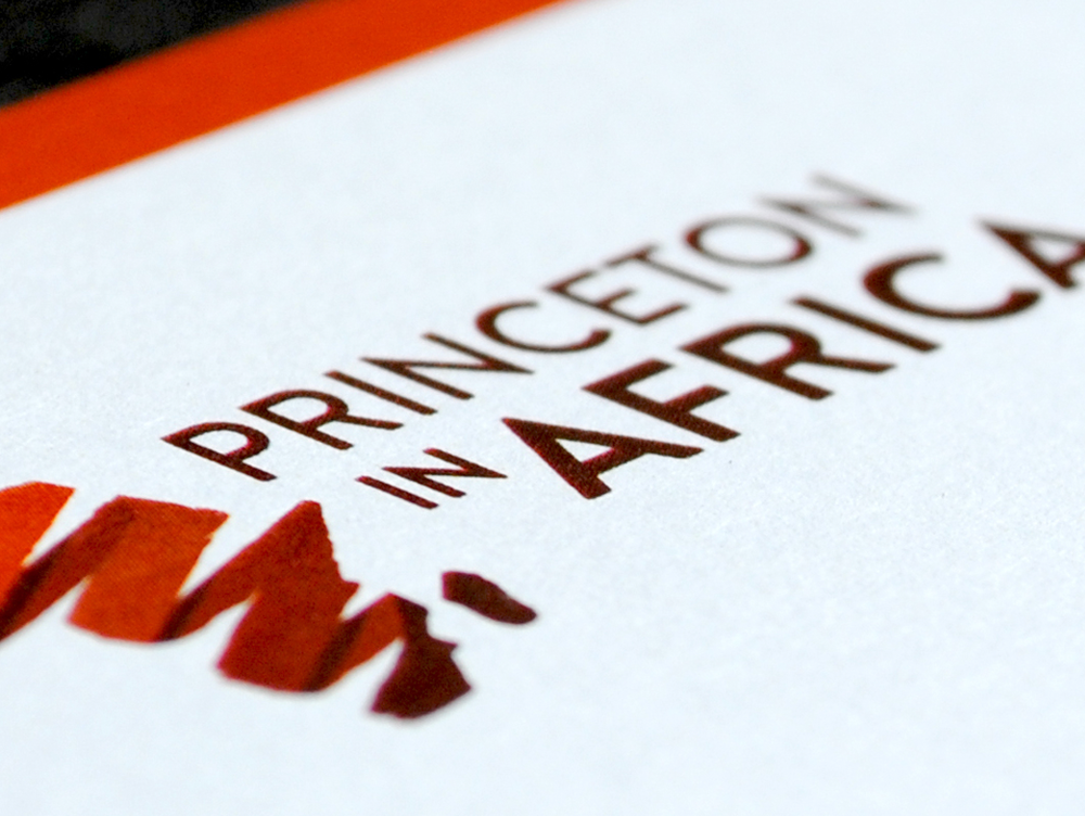 Princeton in Africa   <strong></strong>